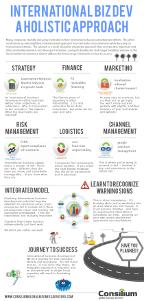 holistic approach to export and global sales and international business development