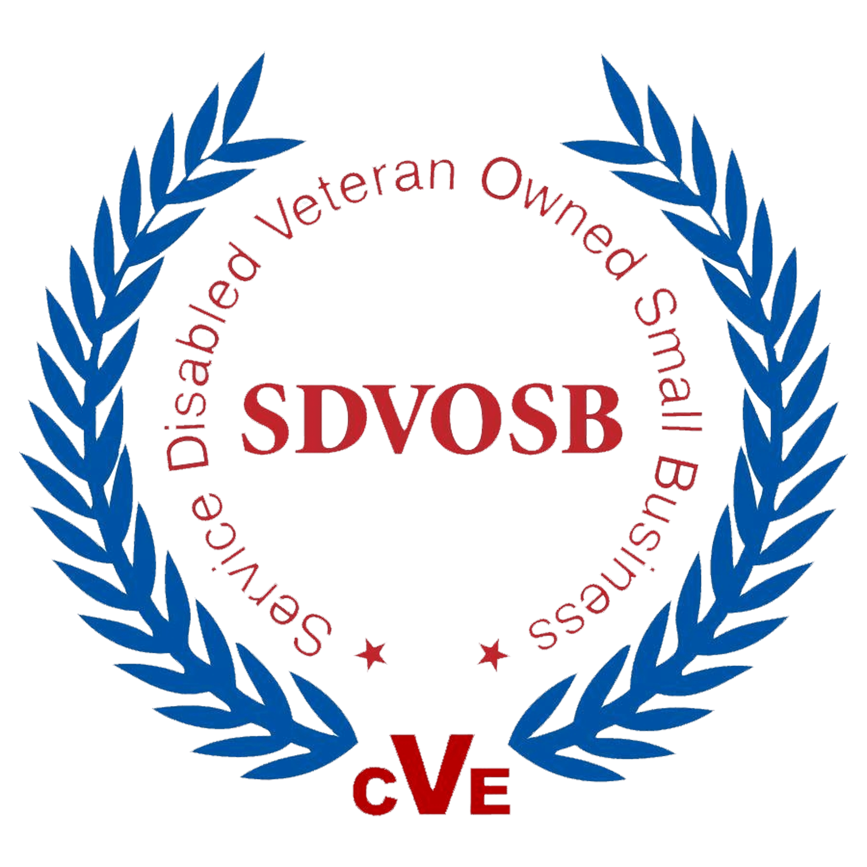 Consilium global Business Advisors is an SDVOSB.png