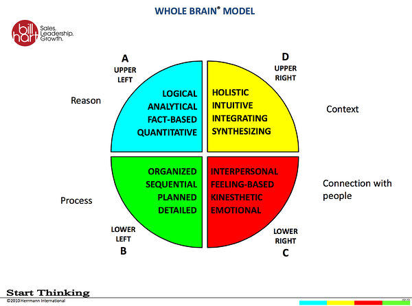 the_whol_brain_model.png